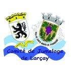 Illustration de Comité de Jumelage de Larçay